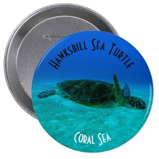 Hawksbill Sea Turtle Great Barrier Reef Coral Sea Button