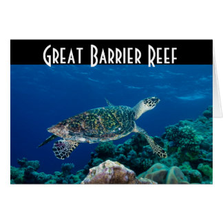 Hawksbill Sea Turtle Great Barrier Reef Coral Sea Greeting Card
