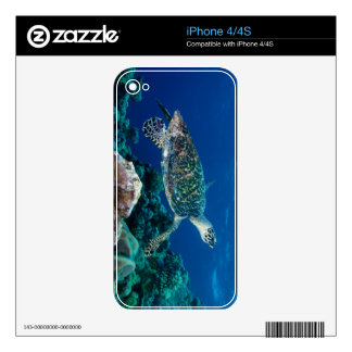 Hawksbill Sea Turtle Great Barrier Reef Coral Sea iPhone 4 Decal