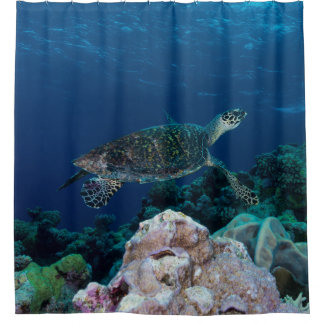 Curtains Ideas coral reef shower curtain : Coral Reef Shower Curtains | Zazzle