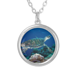 Hawksbill Sea Turtle Great Barrier Reef Coral Sea Silver Plated Necklace