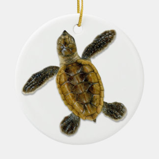 Hawksbill Sea Turtle Hatchling Ornament