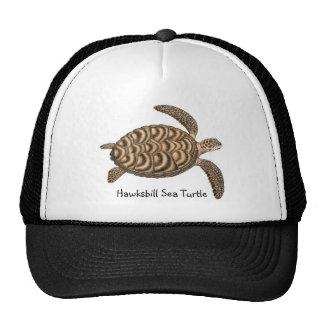 Hawksbill Sea Turtle Mesh Hat