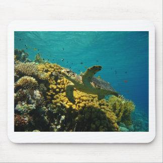 Hawksbill Sea Turtle Mouse Pad