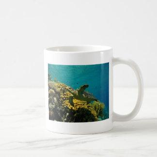 Hawksbill Sea Turtle Mugs