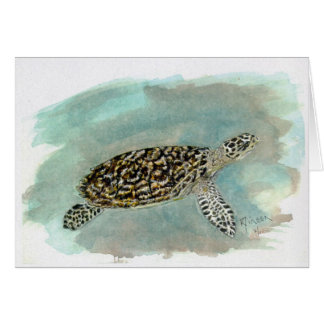 Hawksbill Sea Turtle Note/Greeting Card