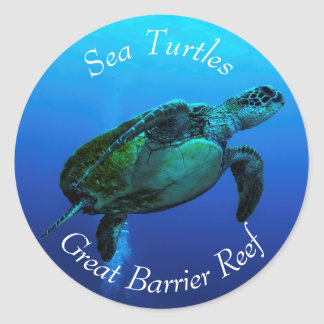 Hawksbill Sea Turtle on the Great Barrier Reef Classic Round Sticker