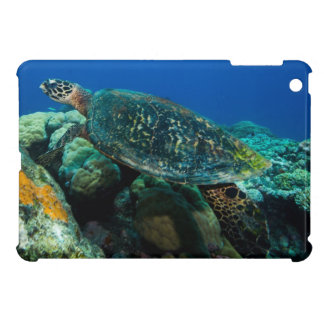 Hawksbill Sea Turtle on the Great Barrier Reef Cover For The iPad Mini