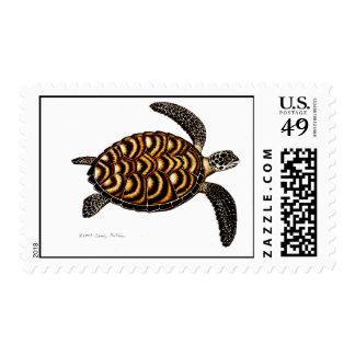 Hawksbill Sea Turtle Postage