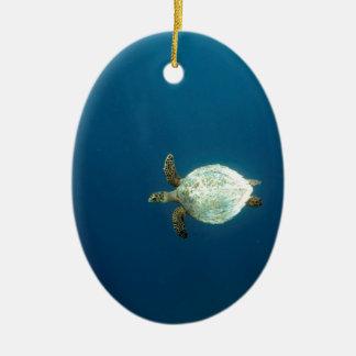 Hawksbill sea turtle swimming underwater ceramic ornament
