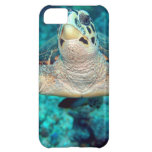 Hawksbill Turtle Case For iPhone 5C