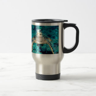 Hawksbill Turtle Mugs