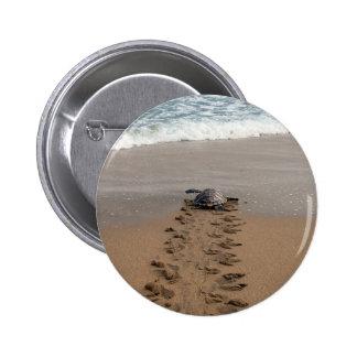 Hawksbill Turtle Trek pin