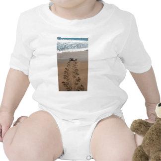 Hawksbill Turtle Trek Shirts