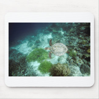 Hawksbill turtle underwater Raja Ampat islands Mouse Pad