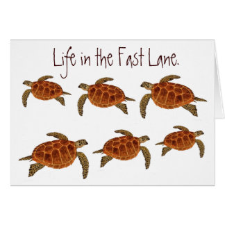 Hawksbill Turtles card