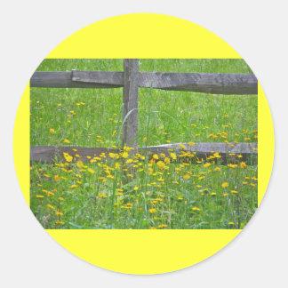 Hawkweed at Split Rail Fence Matching Items Classic Round Sticker