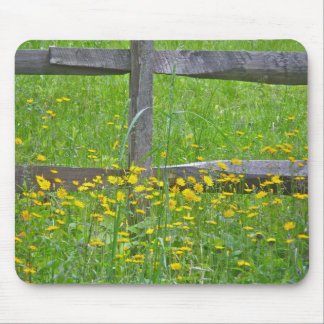 Hawkweed at Split Rail Fence Matching Items Mouse Pad