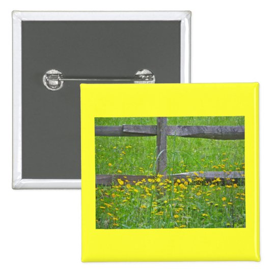 Hawkweed at Split Rail Fence Matching Items Pinback Button