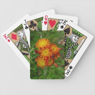 Hawkweed Playing Cards