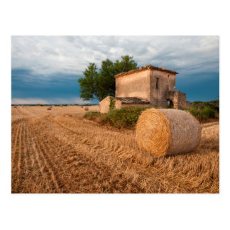 Hay bale in Provence field Postcard