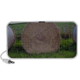 Hay bale rolls in a green field travel speakers