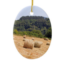 Hay bales along El Camino, Spain Ceramic Ornament