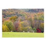 Hay bales and fall foliage, on a farm in art photo