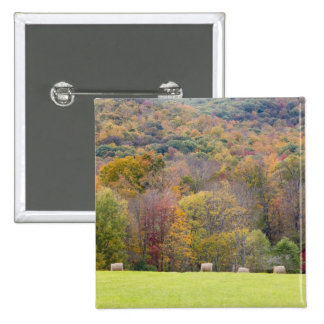 Hay bales and fall foliage, on a farm in 2 inch square button