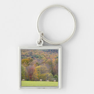 Hay bales and fall foliage, on a farm in keychain