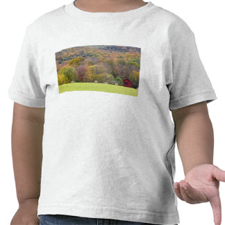 Hay bales and fall foliage, on a farm in shirts