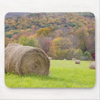 Hay bales and fall foliage on farm, mouse pad