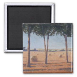 Hay Bales and Pines Pienza 2012 Magnet