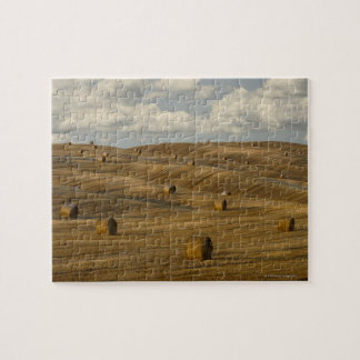 Hay bales and rolling landscape, Tuscany, Italy Jigsaw Puzzle