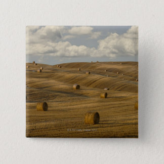 Hay bales and rolling landscape, Tuscany, Italy Pinback Button