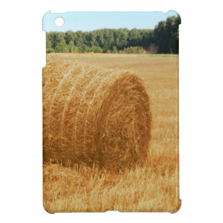 Hay bales cover for the iPad mini