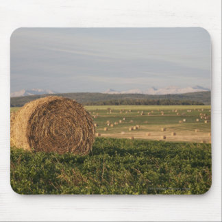 Hay Bales In A Field With Mountains At Sunrise Mouse Pad