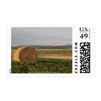 Hay Bales In A Field With Mountains At Sunrise Postage