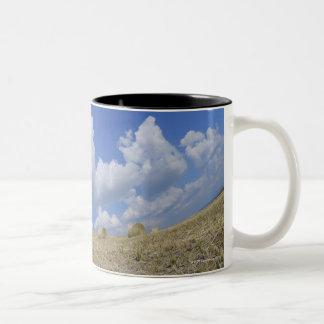 Hay Bales in Field Pienza Val d Orcia Siena Coffee Mug
