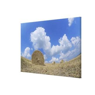 Hay Bales in Field, Pienza, Val d'Orcia, Siena Canvas Print