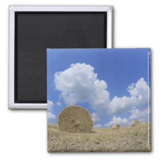 Hay Bales in Field, Pienza, Val d'Orcia, Siena Magnet