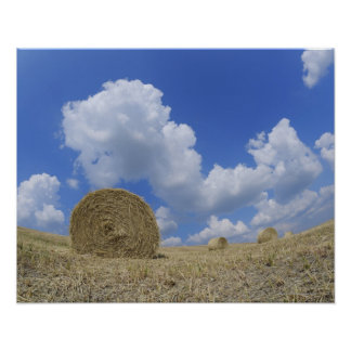Hay Bales in Field, Pienza, Val d'Orcia, Siena Poster