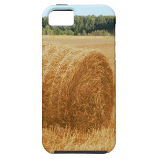 Hay bales iPhone SE/5/5s case