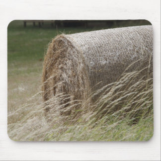 Hay bales mouse pads
