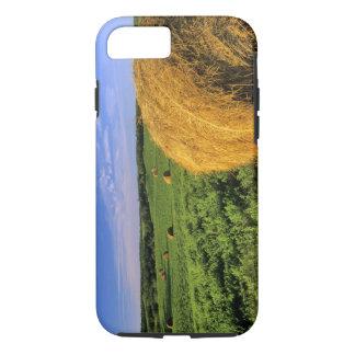 Hay Bales near Bottineau North Dakota iPhone 7 Case