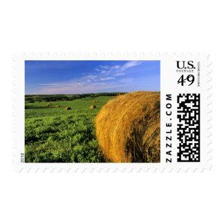 Hay Bales near Bottineau North Dakota Postage Stamp