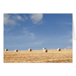 Hay Bales on Field Card