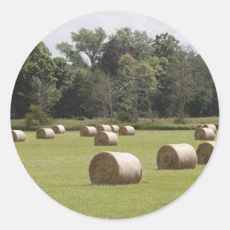 Hay bales round sticker