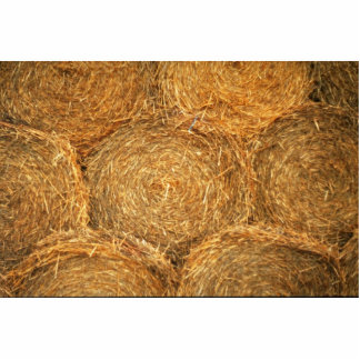 Hay balls cut out