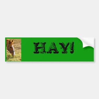 HAY! BUMPER STICKER